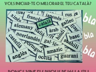 Taller de Català